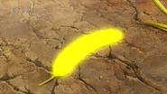 Golden Wheat2