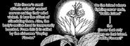 Battle Flower Manga