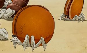 Dorayarmit Crab