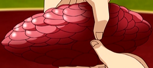 Rose Oyster Anime
