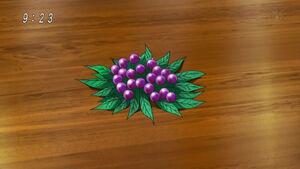 Gamble Berry1