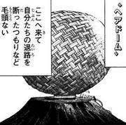 Hair Dome