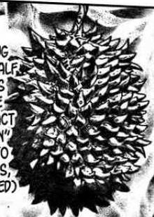 Devil Durian