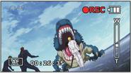 SharkcrocodileVSMatch