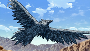 Rock Condor upclose