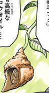 Whelk Fruit Manga color
