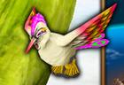 PeacockRubanda