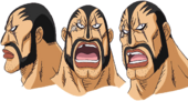 Brubo Expressions