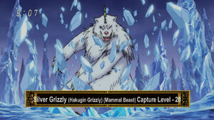 Silver Grizzly Eps 28