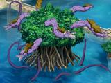 Mangronve