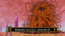 MegaoctopusAnime