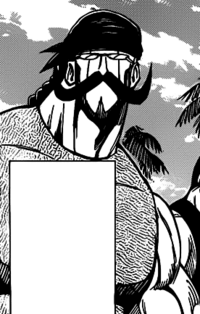 Boran (manga)