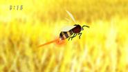 Infini Bee2
