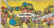 Hero-Turtles