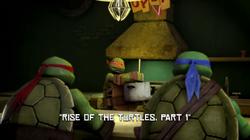 El Origen de las Tortugas P1