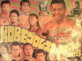 Kobe World Pro Wrestling Festival (2008)