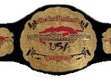 Open the Freedom Gate Championship