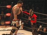"""""""Hollywood"""" Stalker Ichikawa Bosou 10 Match Series"""