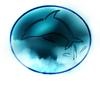 Daring Dolphins Logo