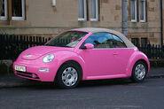 Pink Beetle