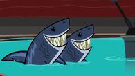 SharksLove
