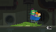Bumping into gator