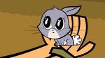 Bunnyhand