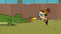 Beth aligator