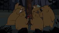 Bearsattack