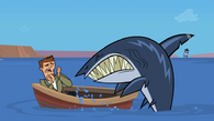 Don shark food