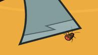 Poor Bug