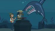 Shasmine shark