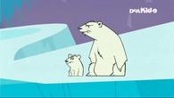 PolarBearsLookOn
