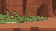 Killer crocs