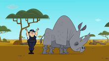 Macarthur rhino