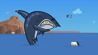 Crimson scares shark