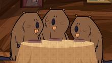 BeaversHaveDinner