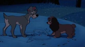 Lady And The Tramp 1This Is The Night