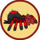 KillerSpiders