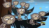 Małpa płaci