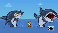 Mary taka straszna że aż rekiny uciekają