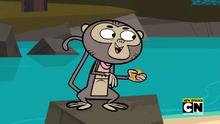 S05E19 Pieniążek małpy