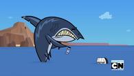 Crimson straszy rekina