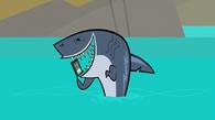 Palmtop w szczęce rekina