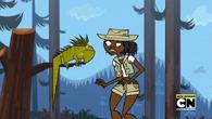 Karmienie Iguany