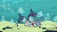 S05E01 Atak rekinów