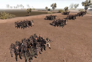 Islamic State army