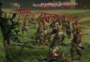 Nanman troops