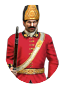 Guard Grenadiers Icon