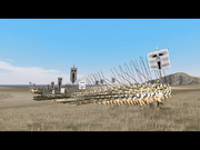 Seleucid pikemen